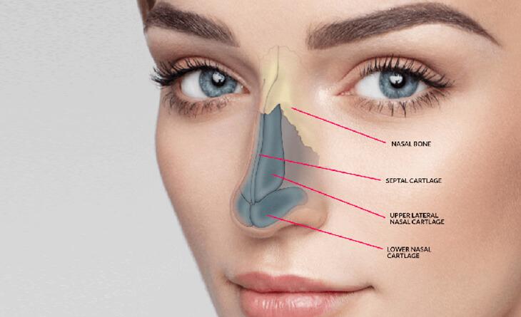 Rhinoplasty Surgery (Nose Job) Procedure